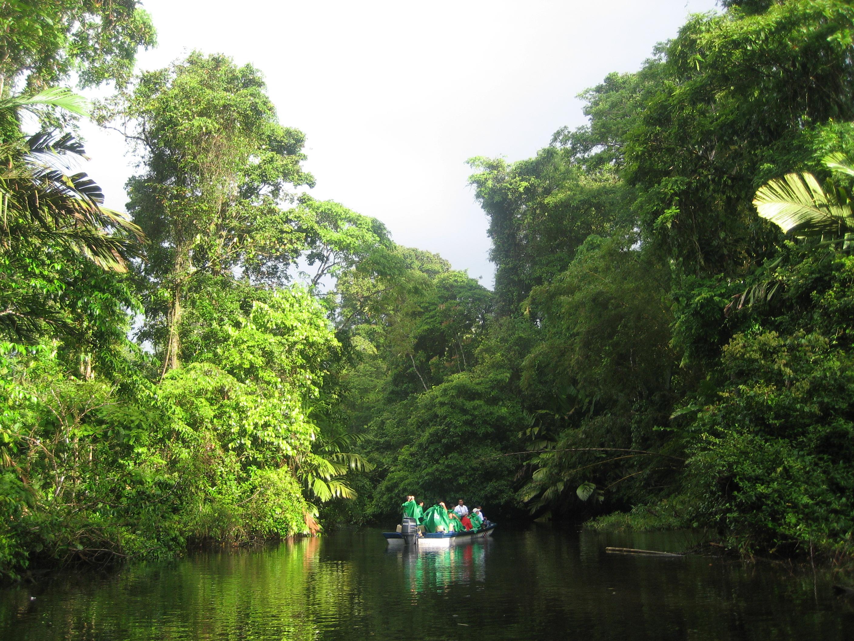 Explore Captivating Costa Rica Tortuguero
